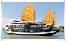 Alova Gold Cruise 1