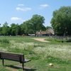 Ladywell Fields