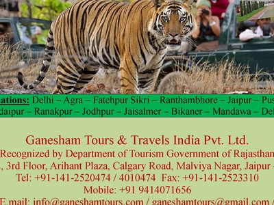 Rajasthan With Taj And Wildlife Tour