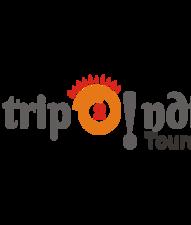 Trip2indiatours Logo
