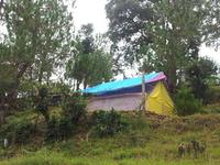 Club Tarzan (Unique Adveture Camp)