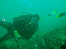 Dive Master At Karachi Scuba Diving Centre