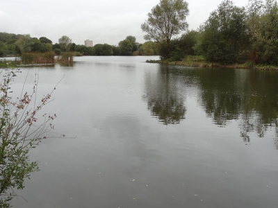 Bardag Lake, Eastbrookend Country Park