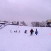 Chestnut Ridge Hill
