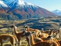 HIKTREK Chile: Www.hiktrek.com