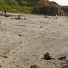 Glass Beach Near Fort Bragg