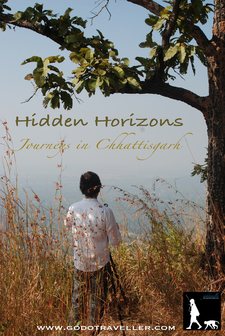 Hidden Horizons 1