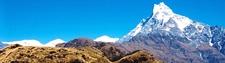 Himalaya Fistal