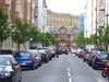 Tree Lined Hallam Street