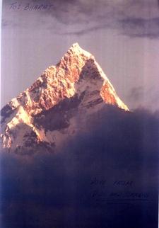 Alpine Explore Nepal P. Ltd