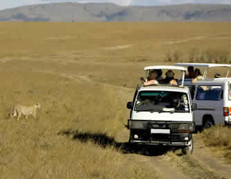 Kenya Road Safari Tours