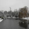 Ravenscourt Park In Winter