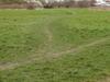 Roundshaw Downs Grassland