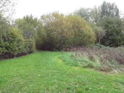 Scrattons Eco Park