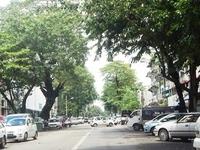 Bo Aung Kyaw Street
