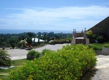 Divine Mercy Hills View