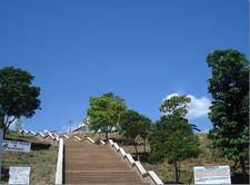Divine Mercy Hills