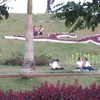 Inya Lake Garden