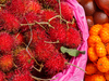 Kundasang Sabah Vegetable Market