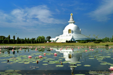The Monastery Of World Peace Lumbini