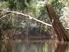 Chini River
