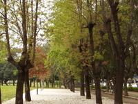 Rongxing Garden Park