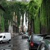 Via Giulia Near Palazzo Farnese