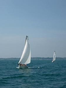 Minibee Sailing