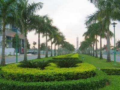 A Street In Hai Chau District