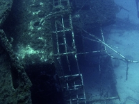 Diving In Mykonos By Godive Mykonos  179