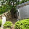 Fortress Site Of Jwasuyeong