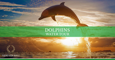 Horizontal Cover Dolphins Family Water Tour Bali