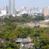 Kaohsiung Central Park 0 1