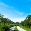 Kaohsiung Metropolitan Park 3