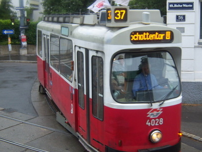 Tram Number 37 Leaves The Hohe Warte