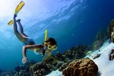 Active Snorkeling