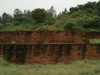 Kotturu Dhanadibbalu