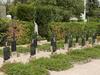 Döbling Nuns' Section