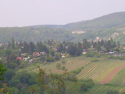 Hackenberg Seen From The Dr.-Meißner-Park