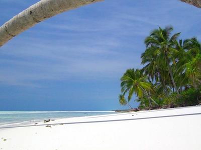 Private Island1