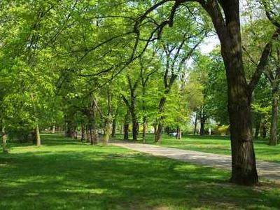 Letná Park On Letná