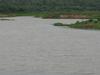River  Gosthani At  Thagarapuvalasa