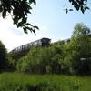 Izmaylovsky Park