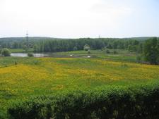 Bitsevski Park