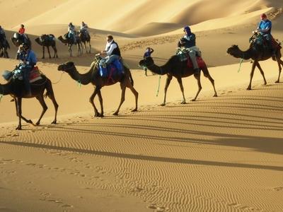 Camel Trek In Erg Chebbi