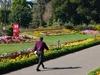 Garden Agri   Horticultural  Society Of  India     Alipore     Kolkata  2 0 1 3   0 2   1 0  4 8 0 6