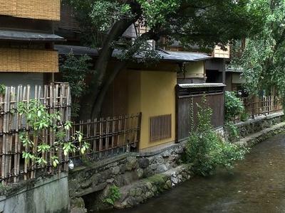 Shirakawa Canal In Gion, Higashiyama-ku