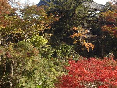 The Main Gate (Sanmon) At Yoshimine-dera