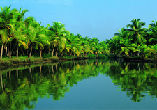 Kerala Tourism 6893