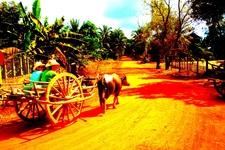 Sunsai Waterbuffalo Cart Tours Main 2